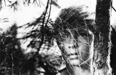 İvan'ın Çocukluğu (1962) Tarkovski Sineması -2